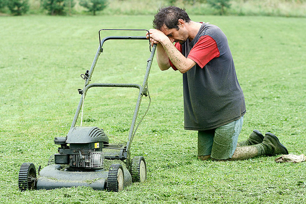 Too Hot To Mow? Let It Go!.