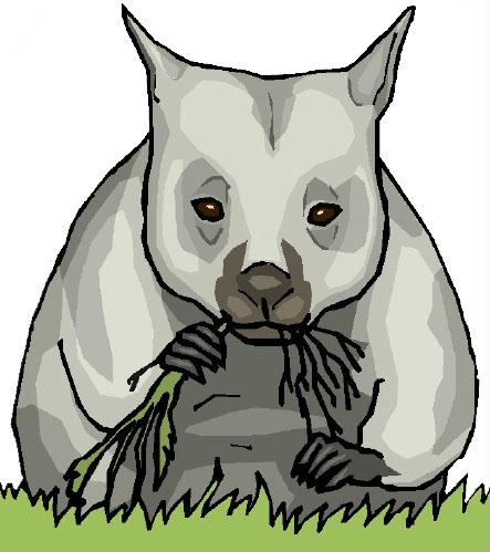 Wombat Clipart Page 1.