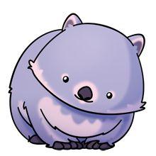 wombat.