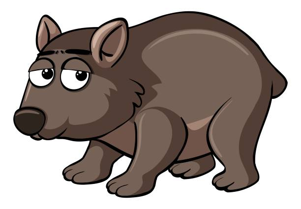 Best Wombat Illustrations, Royalty.