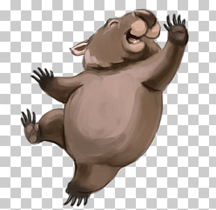113 wombats PNG cliparts for free download.