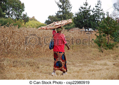 Stock Photography of An African woman while carrying the wood for.