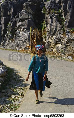 Stock Photos of White Hmong woman carrying wood in.
