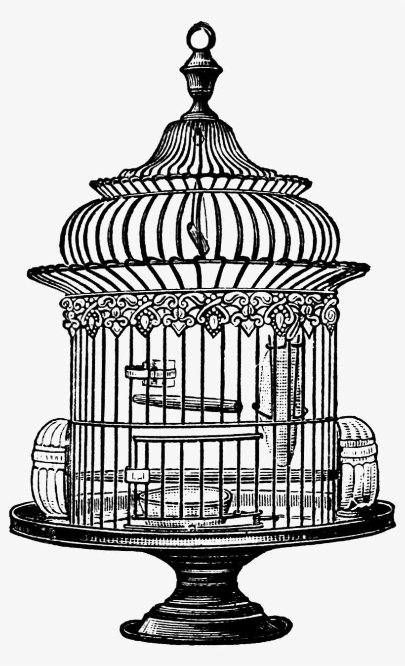 Watercolor Flower Birdcage Clipart By Bohemiangardens.