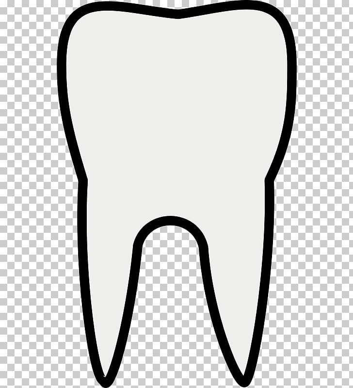 Free content , Tooth s PNG clipart.