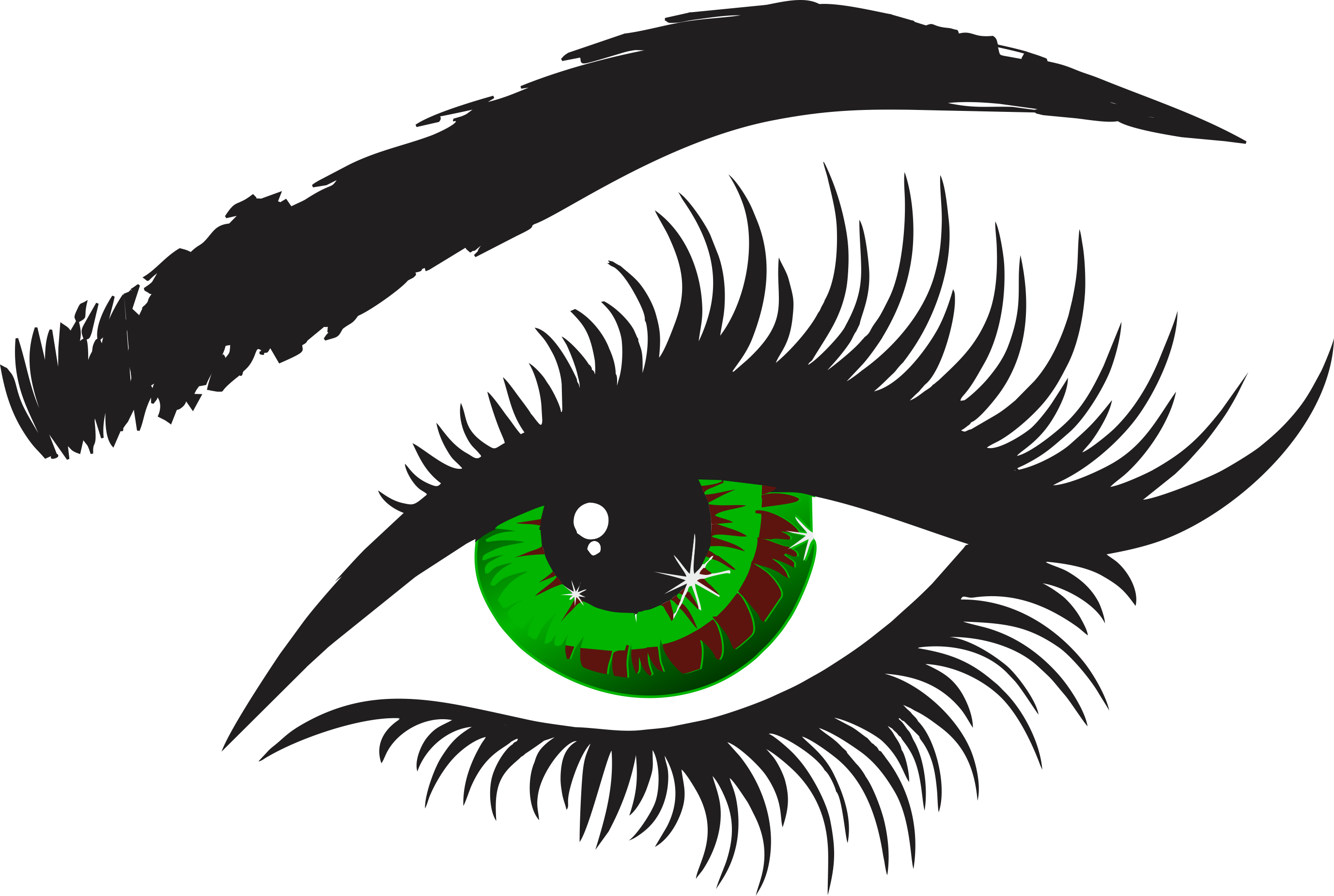 Eye With Lashes Clipart.