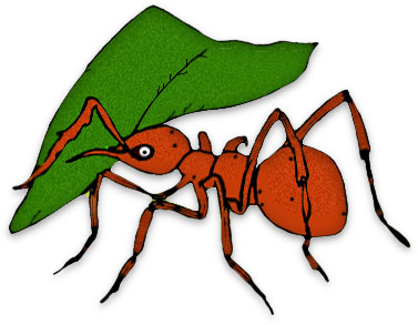 Colony of ants clipart.