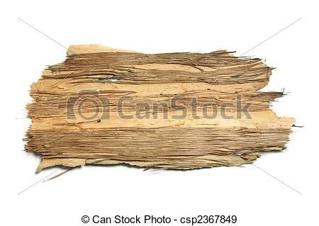 Clipart images of tree bark.
