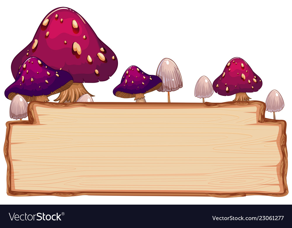 Mushroom on wooden board.