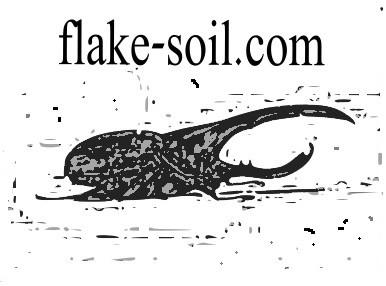 Flake Soil kaufen Online Shop.
