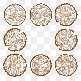 Wood Slice PNG and Wood Slice Transparent Clipart Free Download..