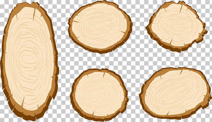 42 wood Slice PNG cliparts for free download.
