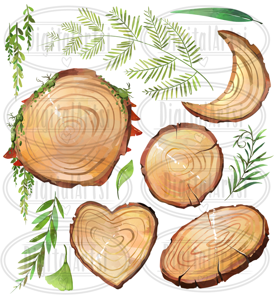 Watercolor Wood Slices Clipart By Digitalartsi.