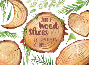 Watercolor Wood Slices Clipart.