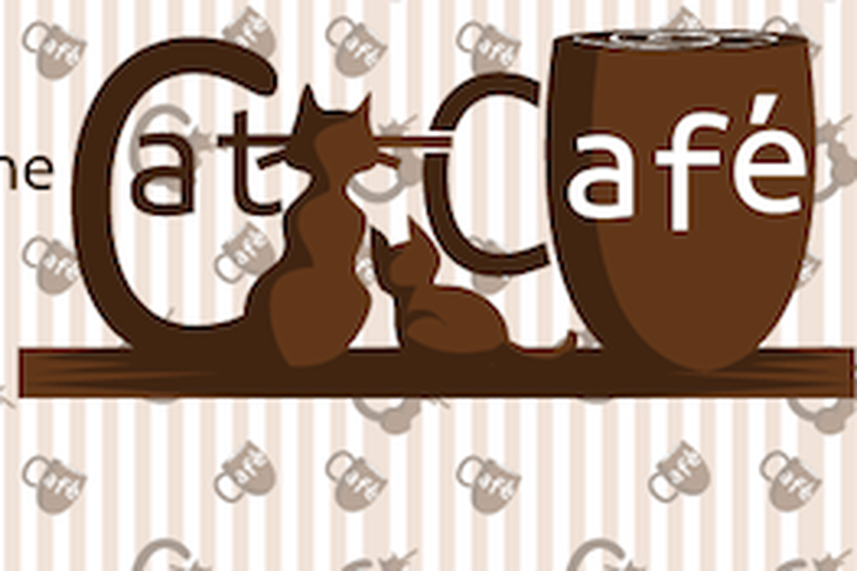 San Diego Enters Race for First North American Cat Café.