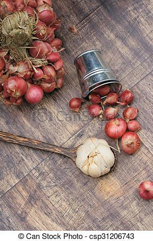 Drawing of shallots and garlic on wood vintage csp31206743.