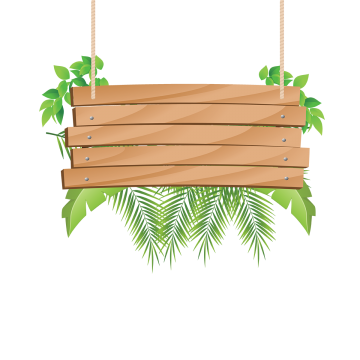 Wood PNG Images.