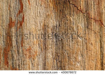 Wood Agate Stock Photos, Royalty.