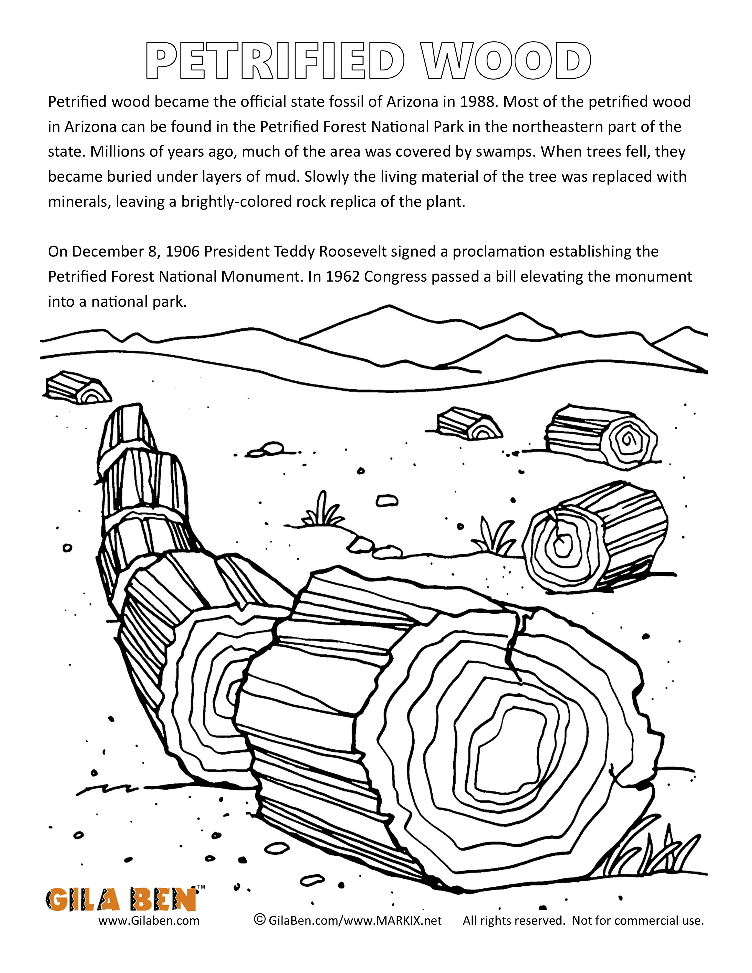 Arizona State Fossil Coloring Page.