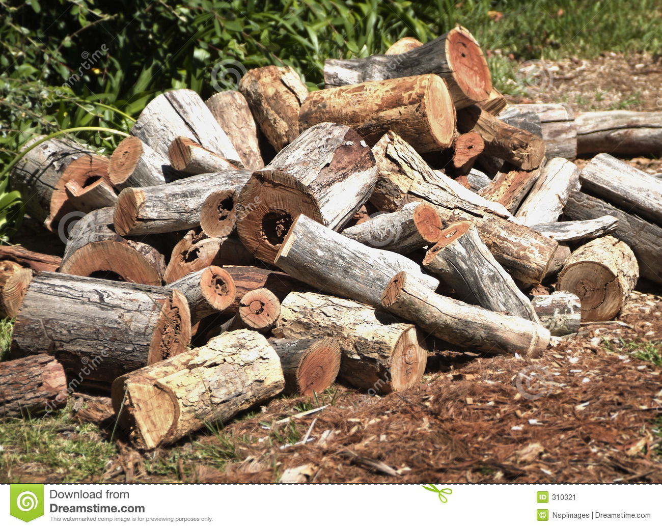 Wood Pile Stock Image Image 310321.