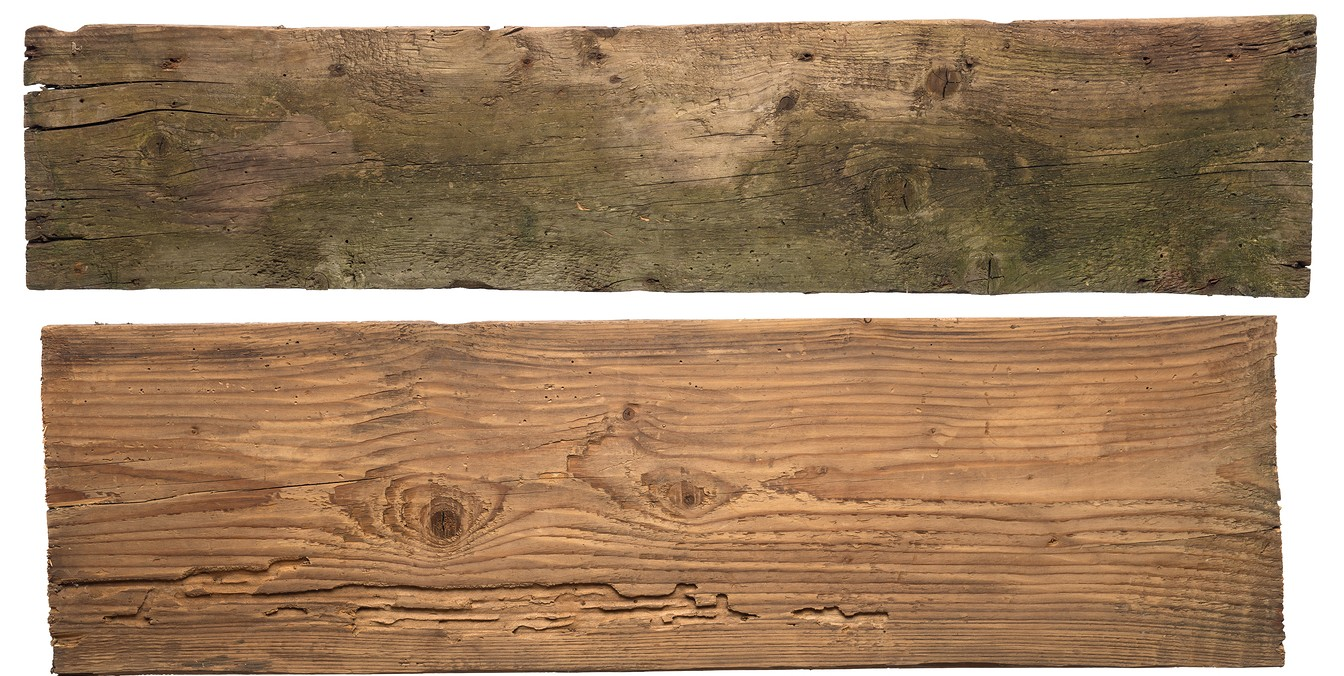 Wood PNG Images Transparent Free Download.
