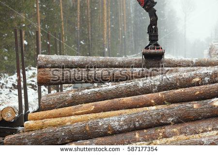 Lumber Stock Photos, Royalty.