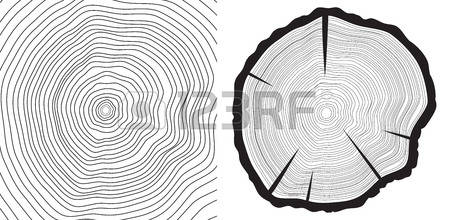 4,521 Tree Rings Stock Illustrations, Cliparts And Royalty Free.