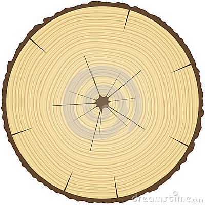 Tree rings clipart.