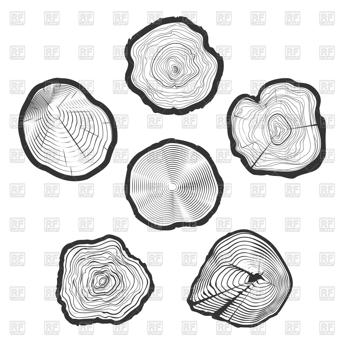 Wood ring saw cuts with linear tree texture Vector Image #125707.