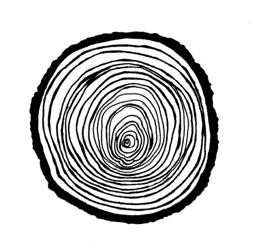 Wood Rings Illustration by blueberryshoes, via Flickr.