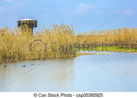 Stock Photo of Wooden round tower for bird watching.