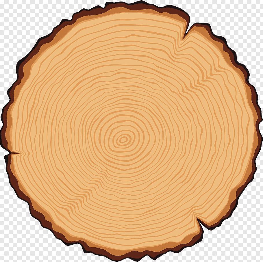 Brown stump illustration, Tree Trunk Cross section.