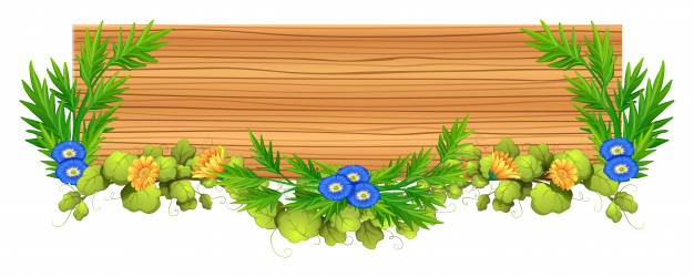 Wooden board with vine and flower Vector.