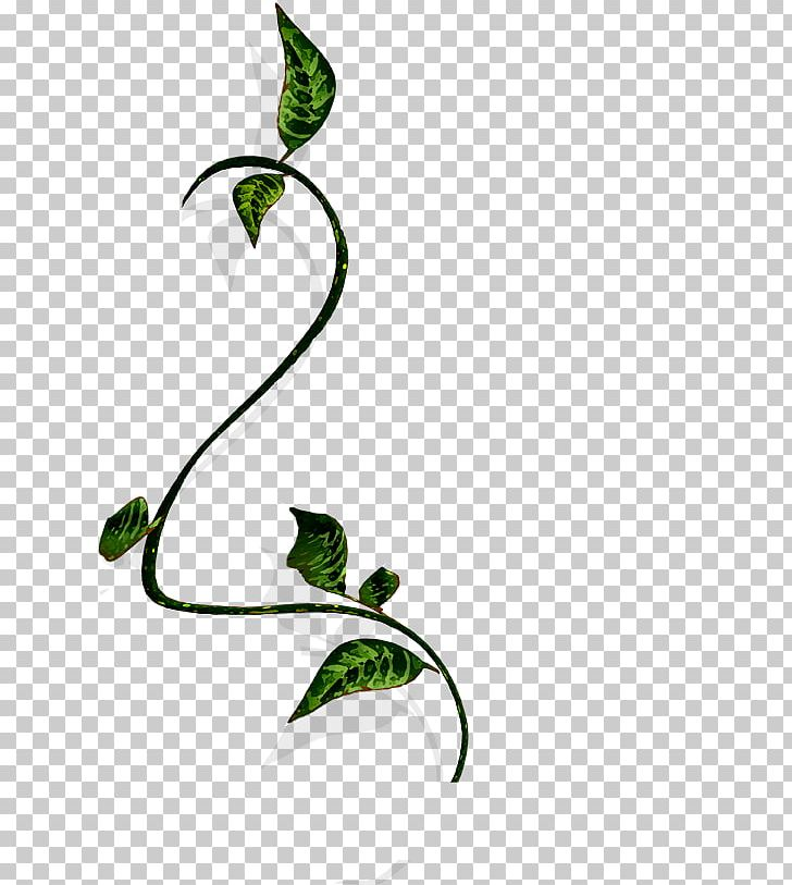 Branch Vine Wood PNG, Clipart, Area, Bird, Computer Icons.