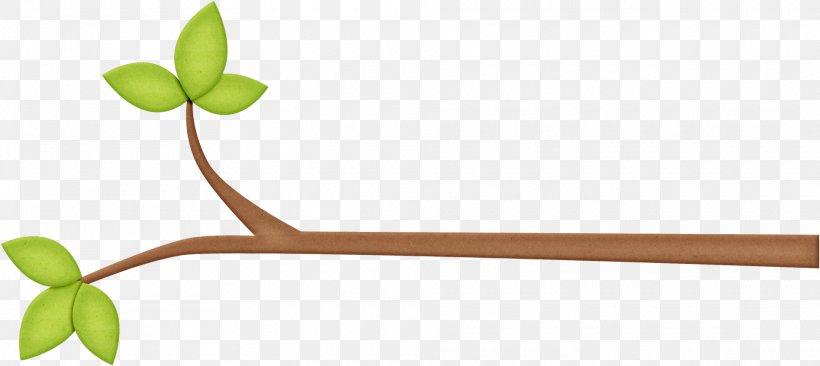 Branch Leaf Tree Twig Clip Art, PNG, 1920x857px, Branch.