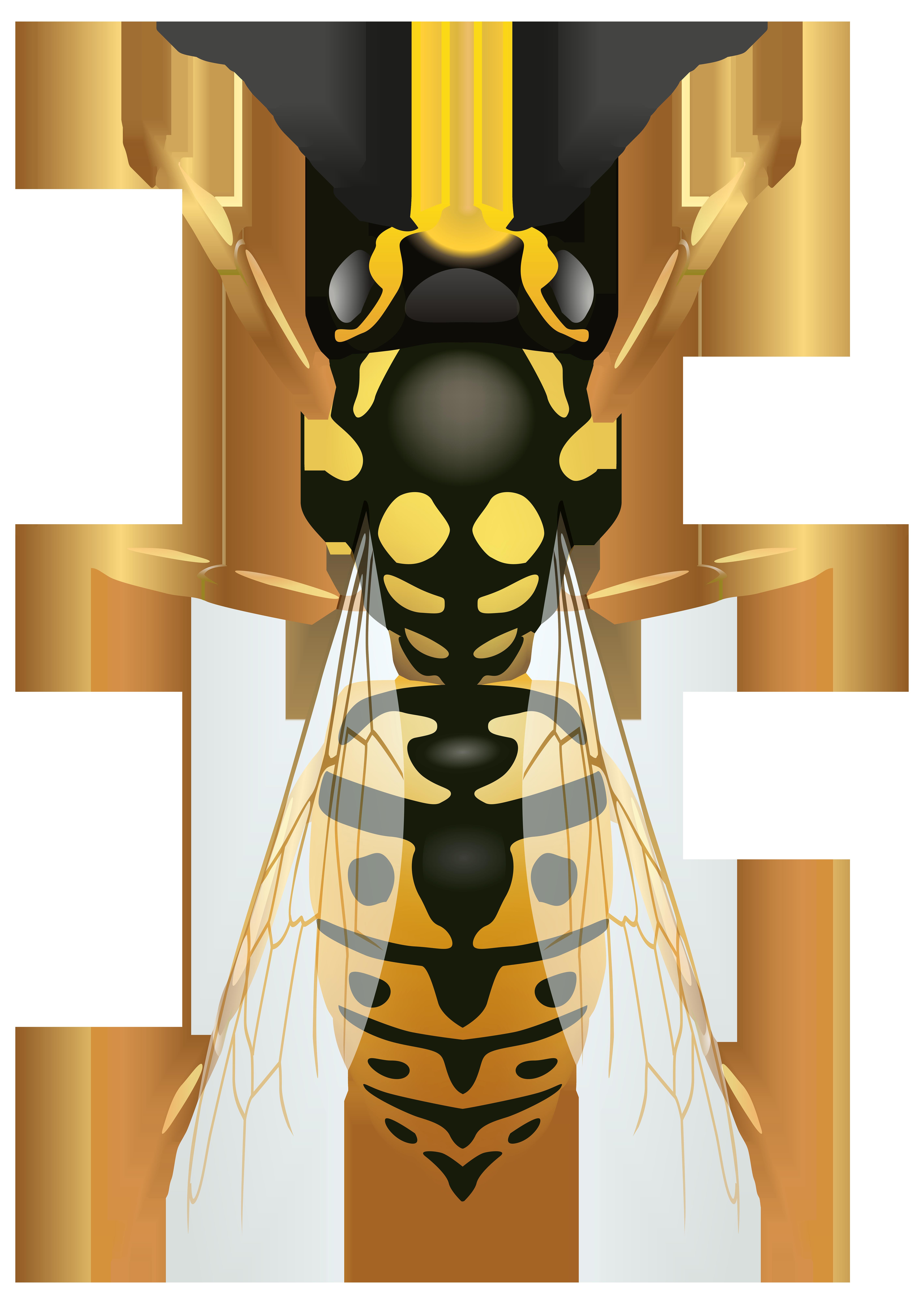 Wasp PNG Clip Art.