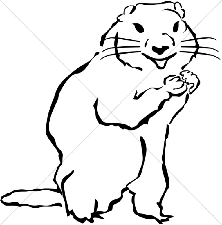 1730 Groundhog free clipart.