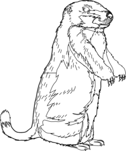 Free Groundhog Black And White Clipart, Download Free Clip.