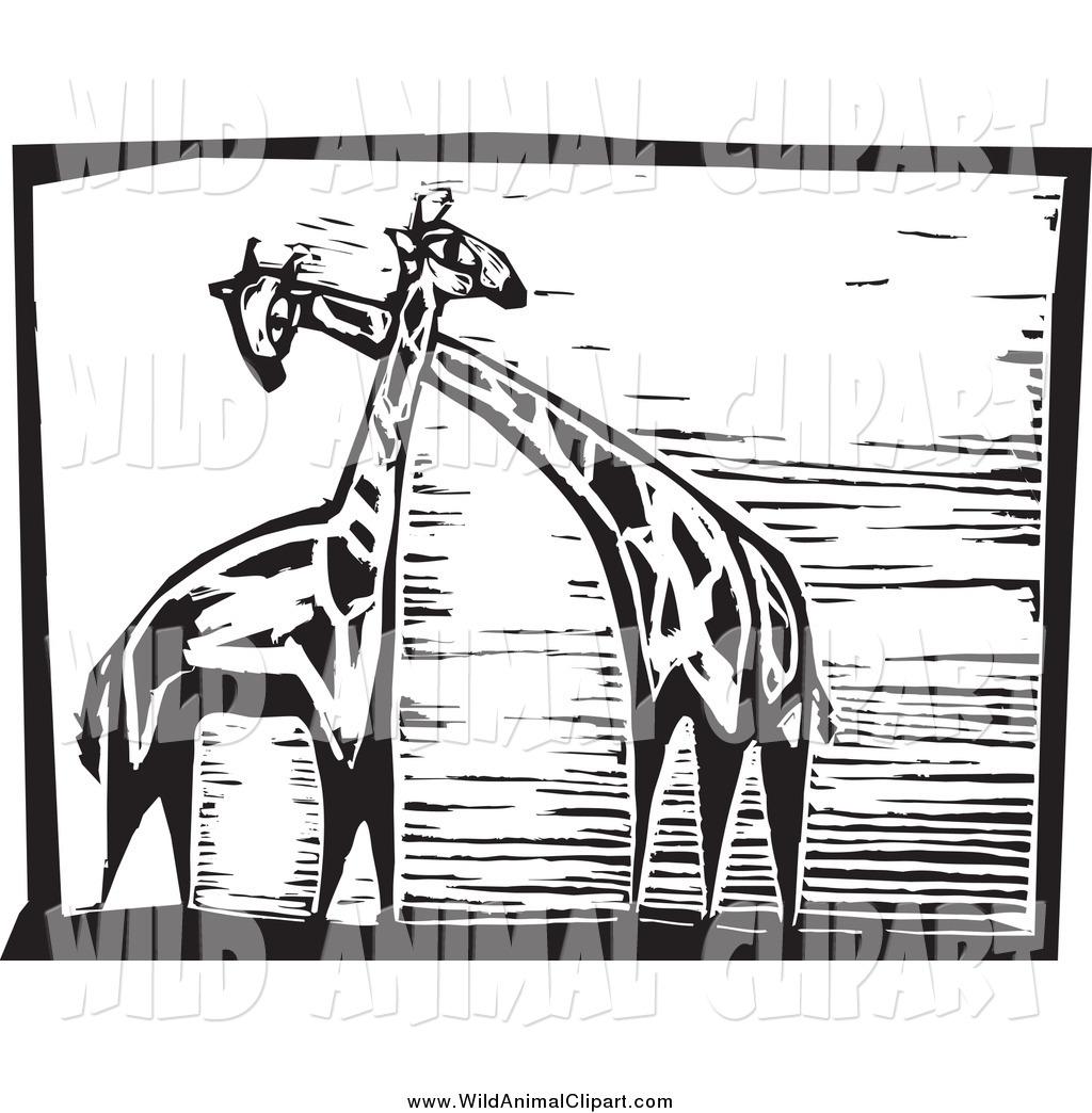 Clip Art of a Black and White Giraffes Woodcut by xunantunich.