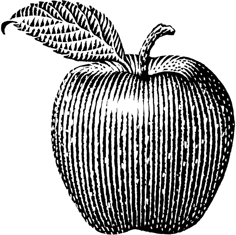 Pin on illustration.