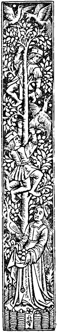 Medieval Woodcuts Clipart Collection 51. Apple Harvest.