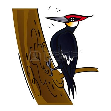 909 Woodpecker Cliparts, Stock Vector And Royalty Free Woodpecker.