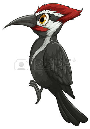 865 The Woodpecker Stock Illustrations, Cliparts And Royalty Free.