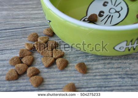 Cat Food Stock Photos, Royalty.