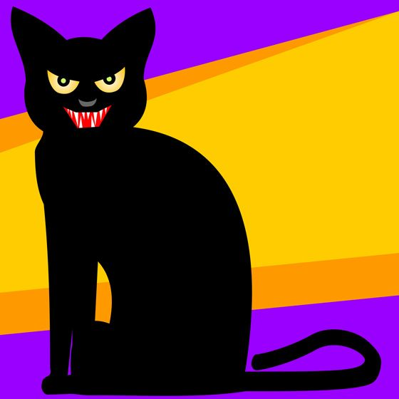 1000+ images about Black Cats on Pinterest.