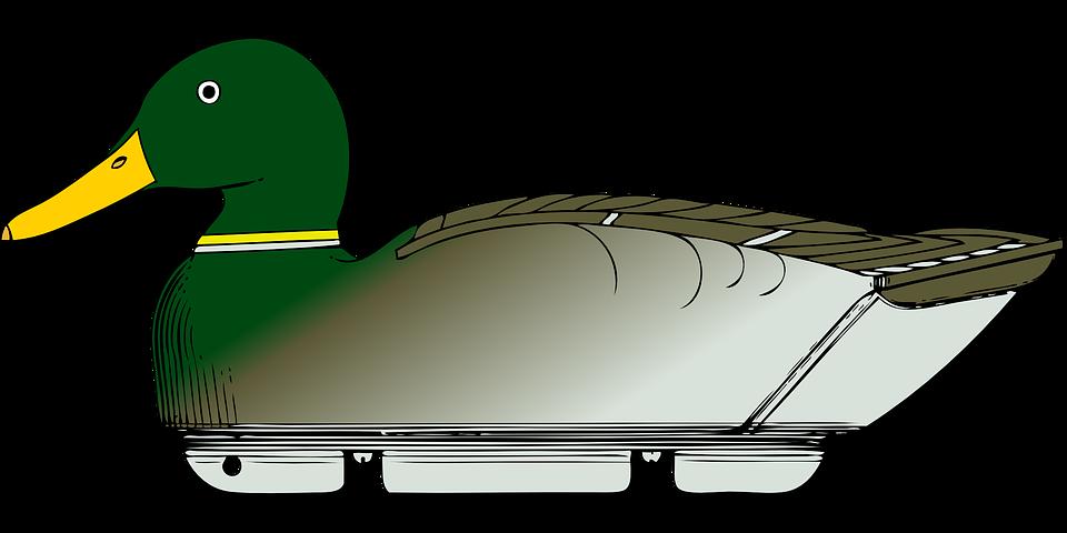Free vector graphic: Duck Decoy, Decoy, Wood Duck.