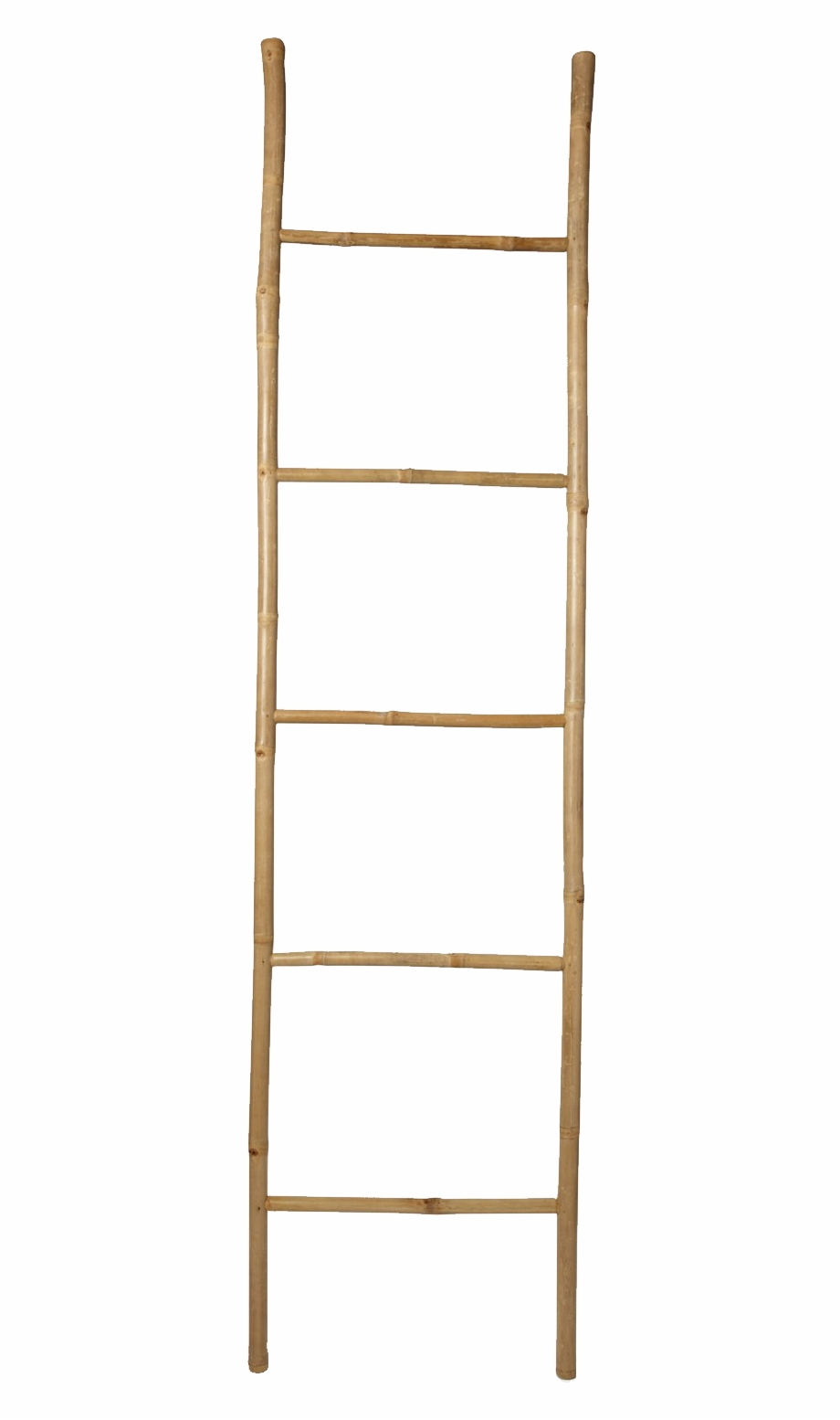 Wood Ladder Png.