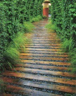 wood path. Maybe a use for extra fence boards?.