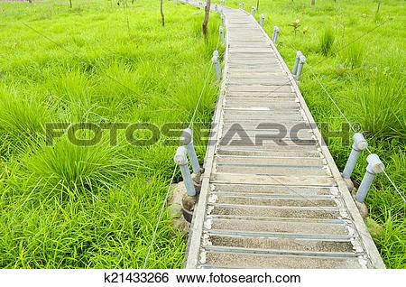 Stock Images of Wooden path walkway through tropical green field.
