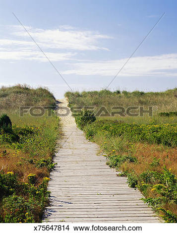 Stock Photo of Wooden path to beach at Marthas Vineyard.